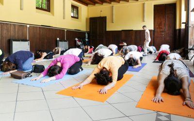 Yoga non stop: un ventaglio di lezioni speciali e differenti